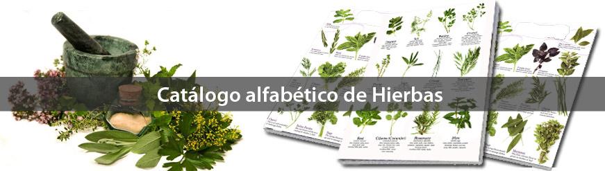catalogo_alfabetico